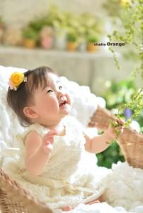 奈良市 スタジオオレンジ 節句