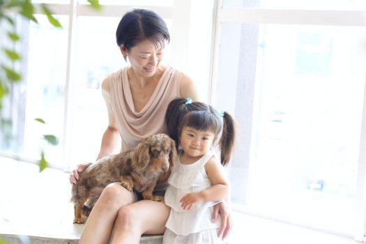 ミニチュアダックスフンド 家族撮影 2歳 お誕生日