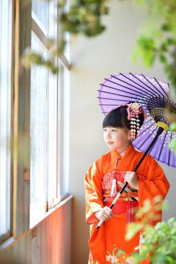 朱色の着物 紫色の傘 7歳女の子 七五三