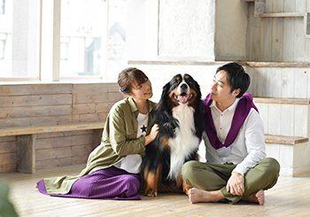 バーニーズ ペットフォト 大型犬 家族撮影