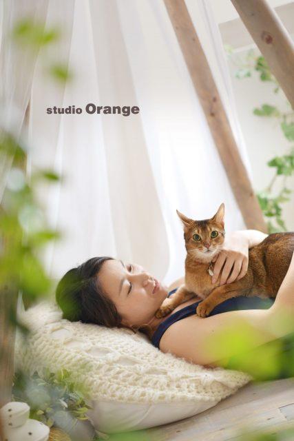 アビシニアン 猫 ペットフォト スタジオオレンジ 奈良