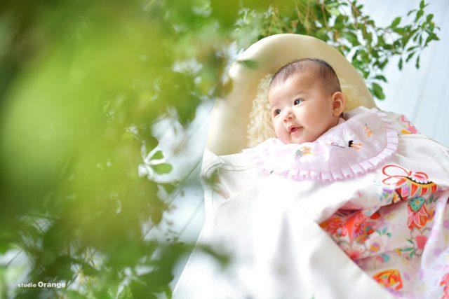 お宮参り 白い着物 3ヶ月女の子