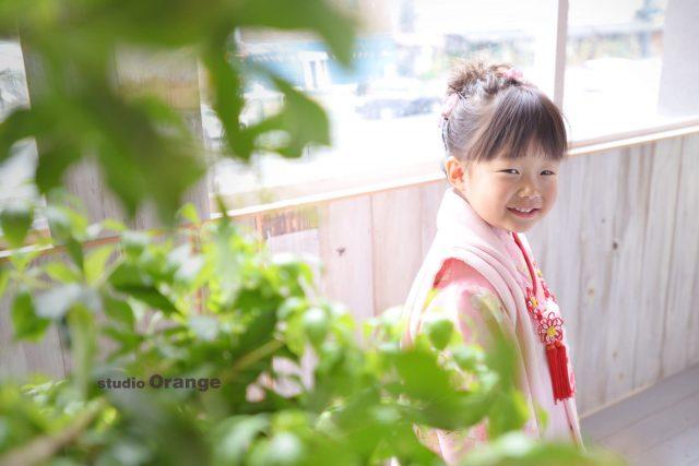 3歳 七五三 ピンクの着物 奈良市 フォトスタジオ ハウススタジオ