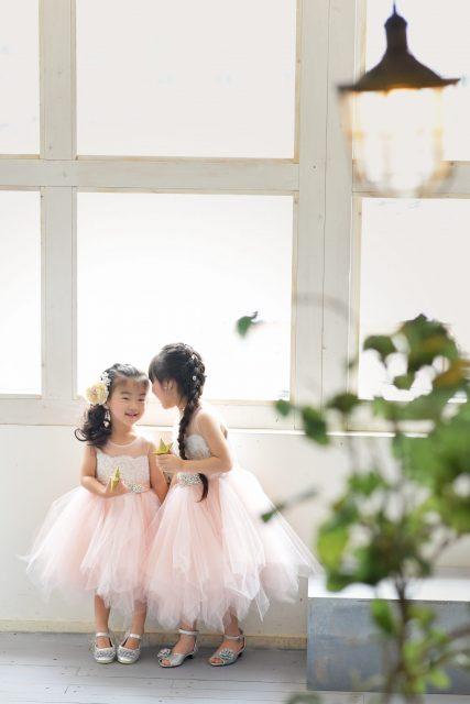ドレス ピンク 女の子 姉妹写真