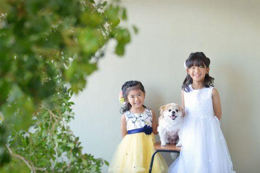 ペット ドレス 姉妹