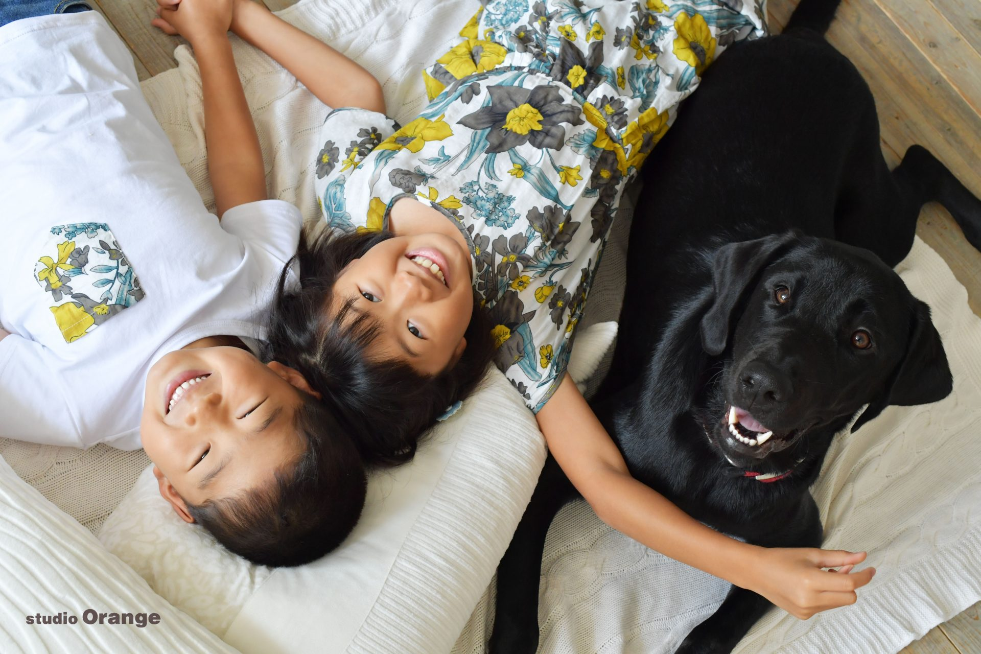 家族写真 黒いラブラドールレトリーバー パピーウォーカー