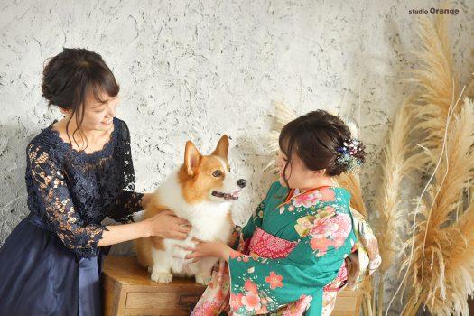 奈良県葛城市 コーギーと一緒に 姉妹撮影 緑の振袖