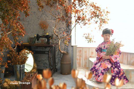 秋 ドライフラワー ドライウッド 着物 七五三 女の子 7歳 写真館
