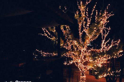 ネスタリゾート神戸 グランピング 神戸 社員研修 旅行 夜景 イルミネーション 電飾
