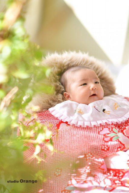 お宮参り 2ヶ月 赤ちゃん 乳児 女の子 初着 着物 赤