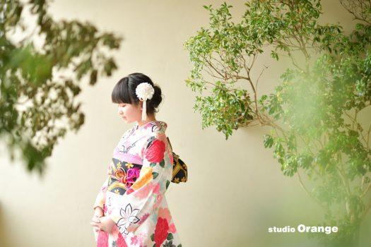 奈良 写真館