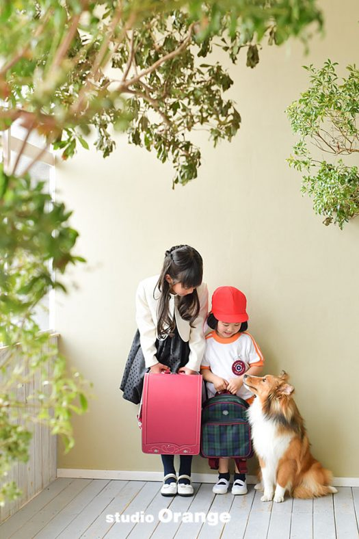 奈良県 写真撮影