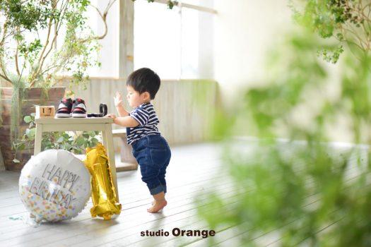 奈良 写真撮影