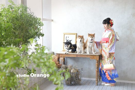 奈良 写真館 成人 成人式 持ち込み ペット 着物
