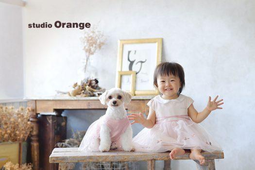 奈良 写真館 ペット お誕生日