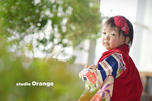 奈良 写真館 七五三 3歳 女の子