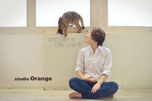 奈良 写真館 ペット 猫