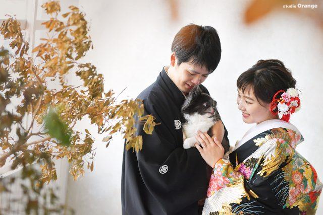 チワワ ペットと一緒 婚礼写真 フォトウェディング ウェディングフォト