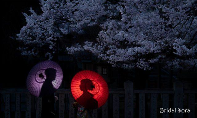 婚礼写真 フォトウェディング ウェディングフォト ロケーション 桜 夜桜