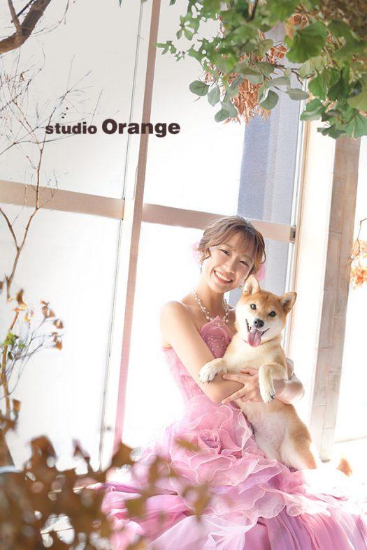 奈良店 成人式 洋装 ペット