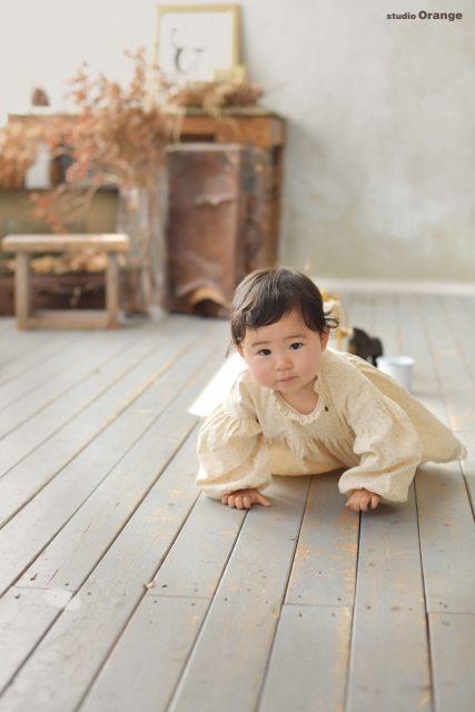 ハイハイ 私服 一歳 1歳 1才 赤ちゃん 女の子 お子様 誕生日 バースデー お誕生日 写真 フォト