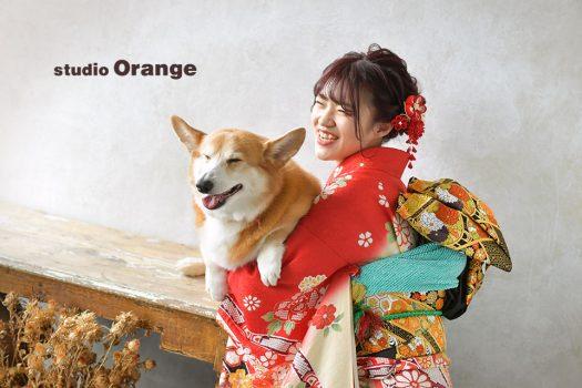 奈良店 フォトスタジオ 写真館 成人式 振袖 1人写し ペット 犬