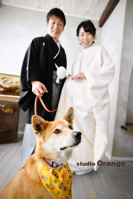 フォトウェディング 新郎新婦 スタジオ 写真館 スタジオオレンジ 奈良店 写真だけの 結婚式 写真だけの結婚式 ペット撮影 犬と 写真館