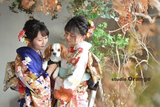 奈良市のフォトスタジオ、スタジオオレンジで成人式の撮影。振袖を着たご主役2人に挟まれるように抱えられたキャバリア。