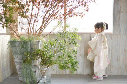 奈良市のフォトスタジオ、スタジオオレンジで七五三の前撮り撮影。モダンながらのお着物を着て振り返る3歳の女の子。