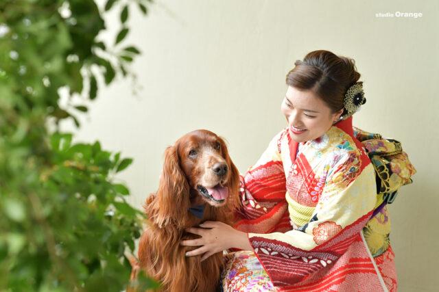 大型犬 ペットフォト 振袖 成人式前撮り 奈良市